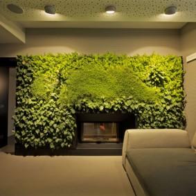 Освещение комнаты с живыми растениями