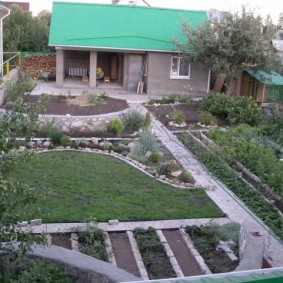 Огород на садовом участке небольшого размера