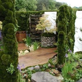 Вертикальное озеленение сада с помощью мха