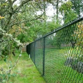 Прозрачная ограда на дачном участке