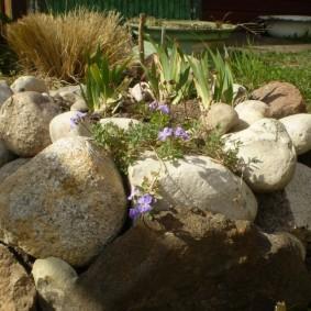 клумбы из камней своими руками фото дизайна