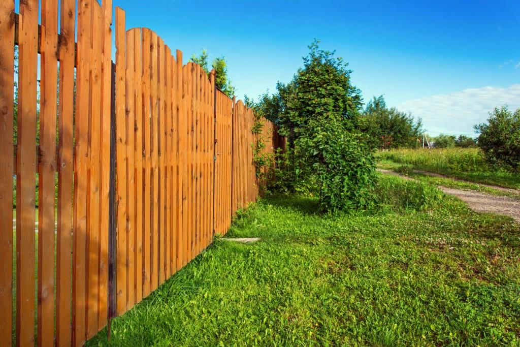Лакированные штакетины деревянного забора