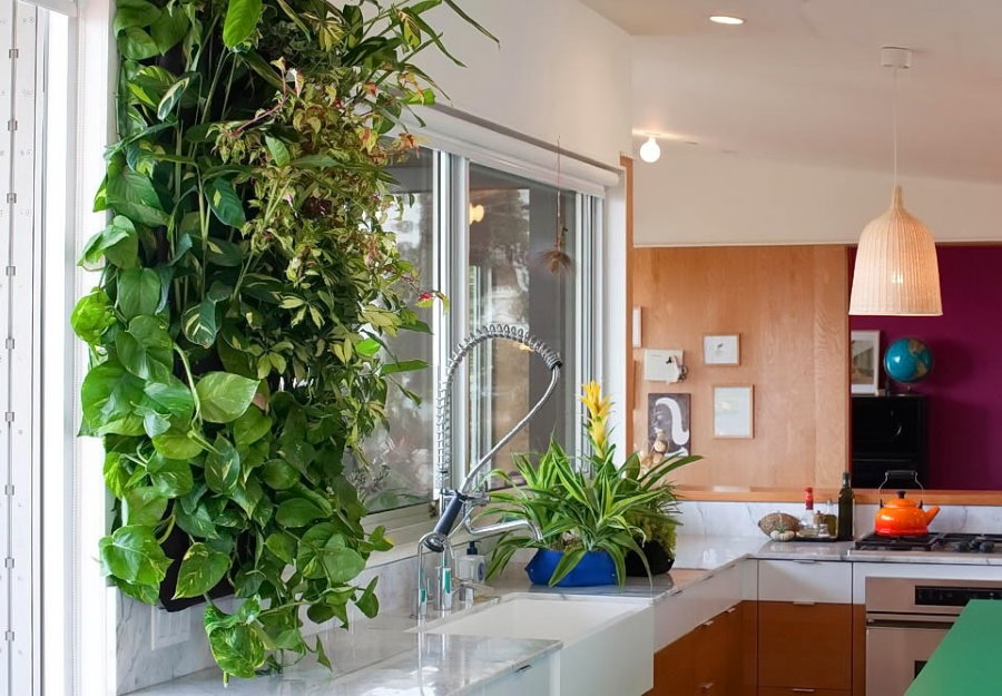Живая стена в интерьере кухни