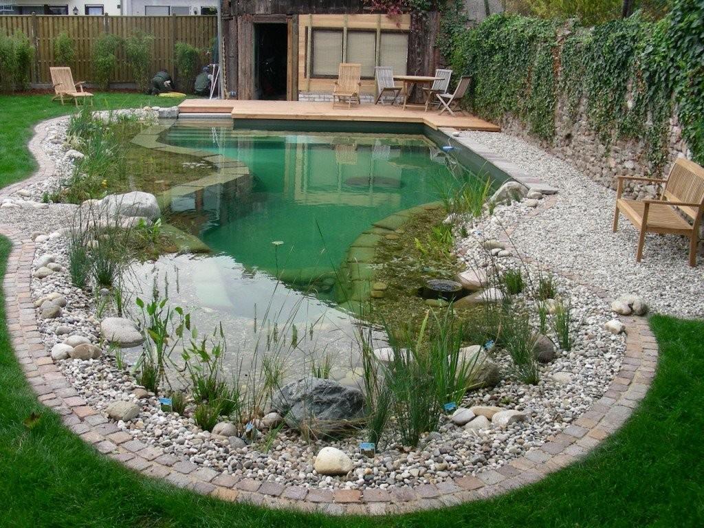 Декоративный пруд с плавательной зоной