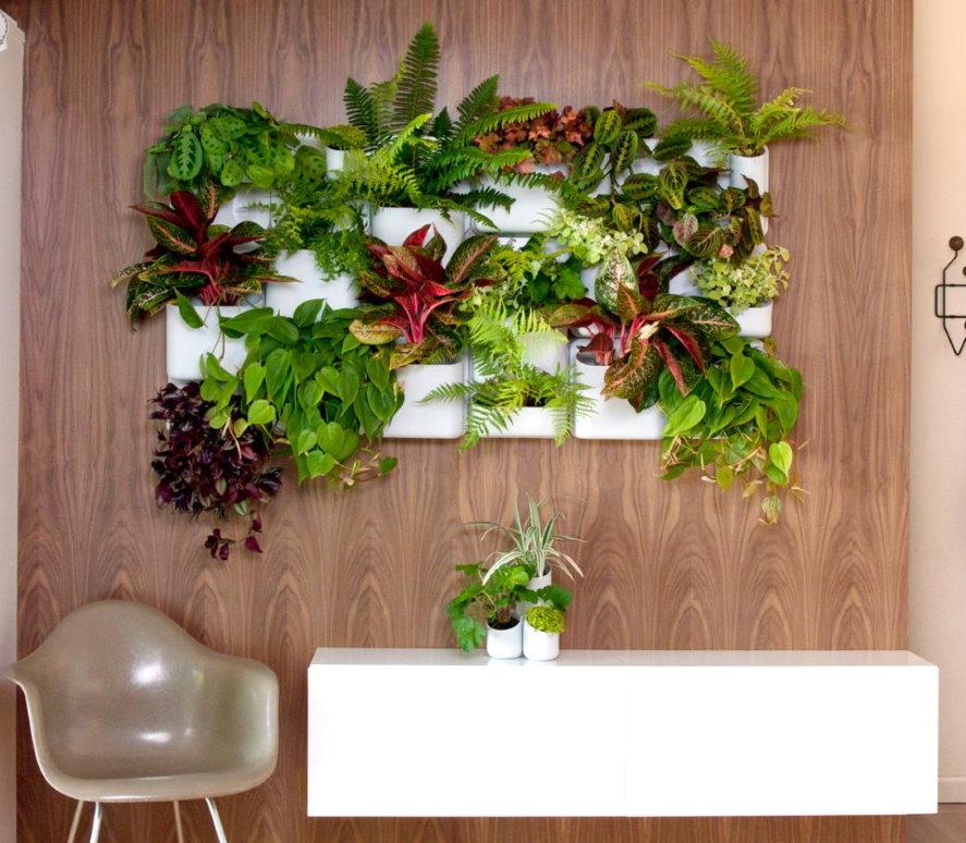Зеленая композиция из декоративных растений