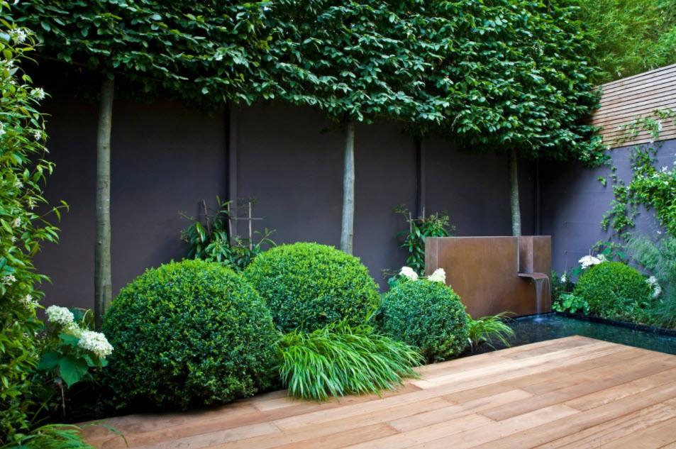 садовый участок 6 соток минимализм фото