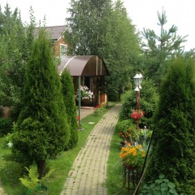 садовый участок 6 соток фото