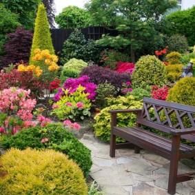 садовый участок площадью 6 соток идеи дизайн