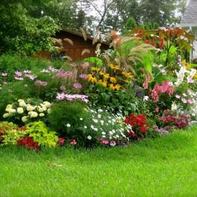 садовый участок площадью 6 соток идеи декор