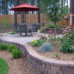 садовый участок площадью 6 соток идеи декора
