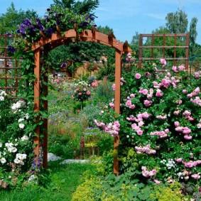садовый участок площадью 6 соток идеи оформления