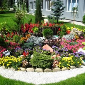 садовый участок площадью 6 соток фото варианты