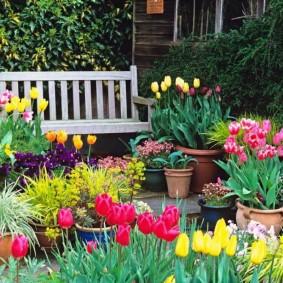садовый участок площадью 6 соток виды
