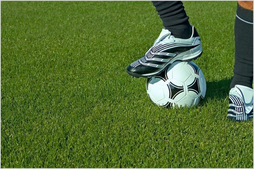 Спортивный газон на футбольном поле