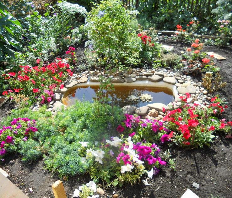 Самодельный водоем из старой ванны в саду частного дома
