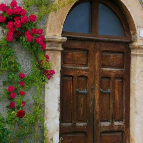 входные деревянные двери оформление