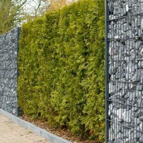 забор из габионов идеи дизайна