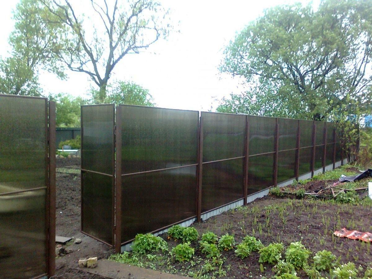 забор из поликарбоната дизайн фото