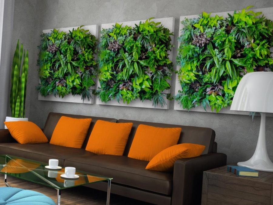 Живые растения над диваном в гостиной