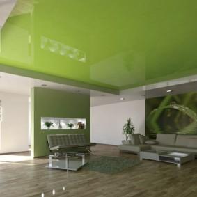 зеленый натяжной потолок в зале