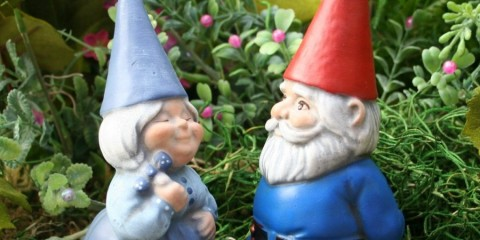 садовые гномы идеи