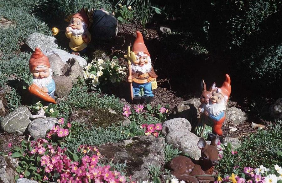 садовые гномы классические