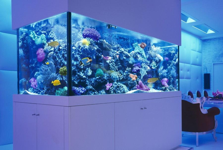 Встроенный аквариум в морском стиле