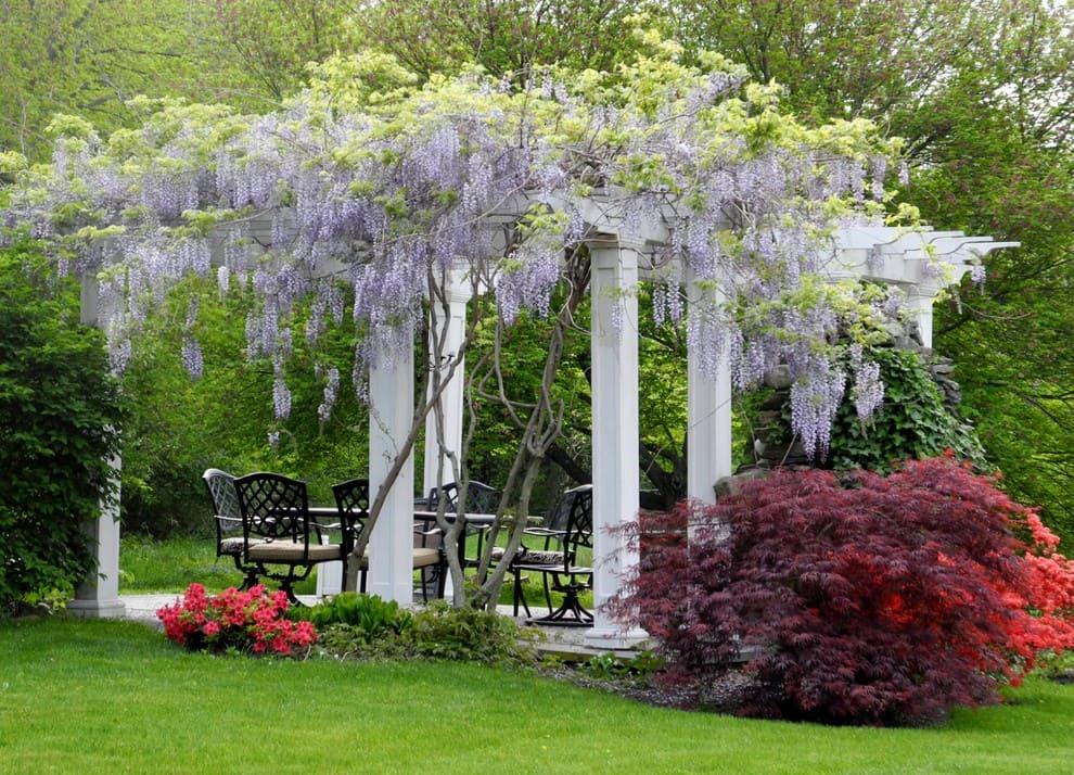 беседка с цветами в саду