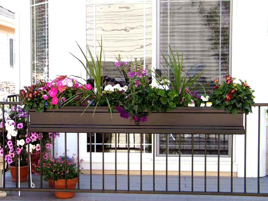 Живые растения в цветочной корзине на перилах балкона