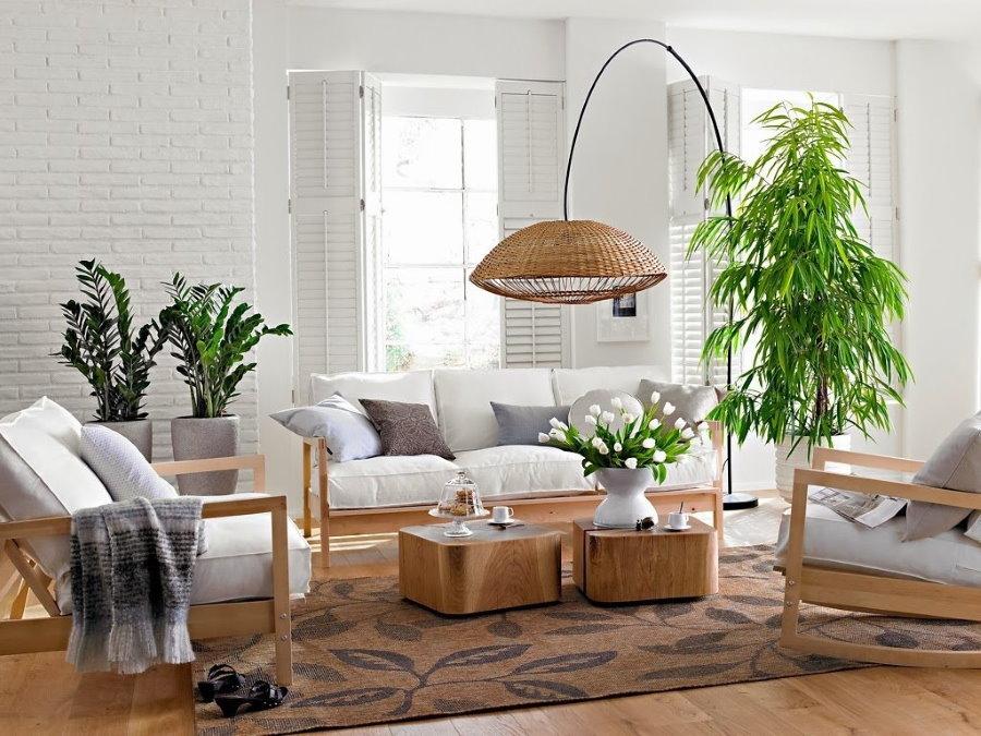 Живые растения в интерьере квартиры панельного дома