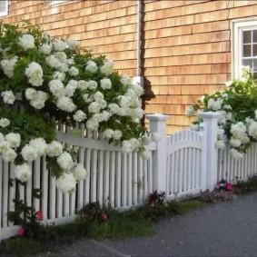 декоративный забор для сада виды оформления