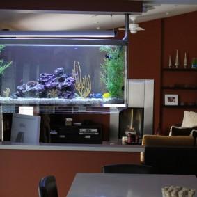 Организация освещения в аквариуме на барной стойке