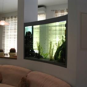 Стеклянный аквариум внутри дугообразной перегородки