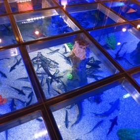 Живые рыбы под закаленным стеклом на полу в зале