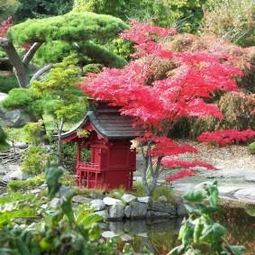 Японский сад с деревьями в стиле бансай