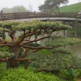 Перекидной мост с деревянными перилами