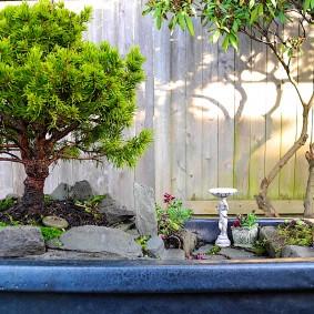 Садовая композиция в технике классического бансай