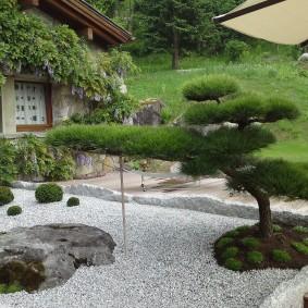 Мелкий камень на поверхности садовой клумбы