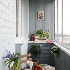 Комнатные растения летом на балконе