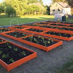 Огородные грядки с металлическими бортами