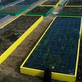Выращивание чеснока на высокой грядке с нетканым материалом