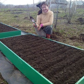 Подготовка приподнятой грядки для посева овощей