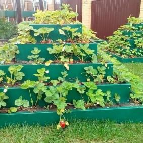 Грядка с пятью ярусами для садовой клубники