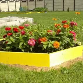 Желтая клумба с красивыми цветами