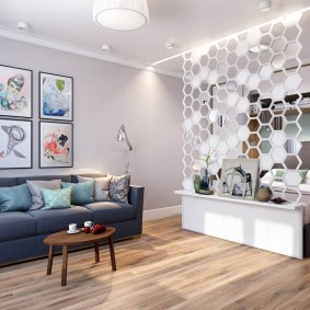 Декоративная перегородка в квартире холостяка