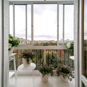 Цветущие петунии в горшках на балконе