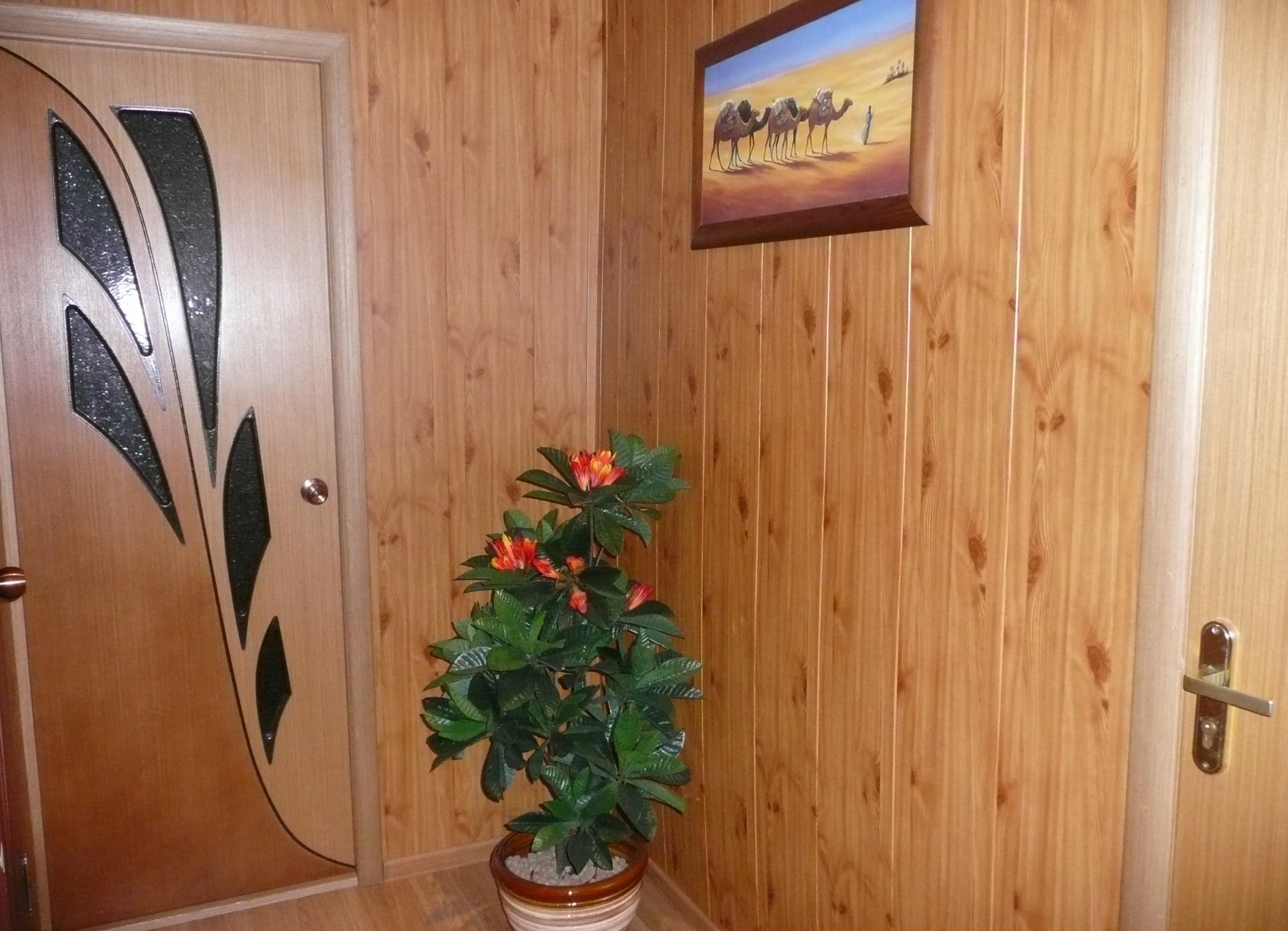 тяжело переживает отделка стен в коридоре панелями фото оборудована большим