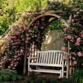 Садовая лавка в тени перголы с плетистыми розами