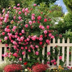 Белый забор из деревянного штакетника