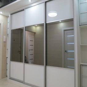 Стеклянные дверцы на алюминиевом каркасе
